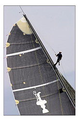 Andy Green of Team GBR looks out for wind at Day 3 of the Americas Cup Jubilee off the Isle of Wight...Marc Turner / PFM Pictures.