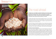 2013 11 08 Tearsheet CARE Women's fight for land report 03 Niger