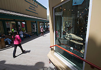Tourists mill around downtown Jackson, Wyo., near the By Nature Gallery, which sells exotic fossils, stones and other relics, including this 65-million-year-old mosasaurus skull, which is for sale for a cool $50,000.