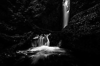 Fine art nature photograph of Gorton Creek Falls in the Columbia River Gorge. The monochrome treatment gives a surreal and mystical feeling to the already mystical area.
