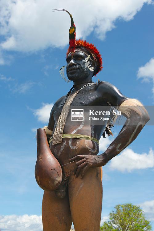 Dani man wearing kotekas (penis gourd) at Baliem Valley Festival, Wamena, Papua, Indonesia