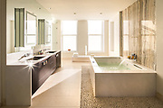 Bathroom, penthouse, 66 e 11th Street. Delos, developer.