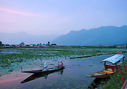 A canoe and shikara, a local wooden boat, at dusk on Lake Dal in Kashmir, India
