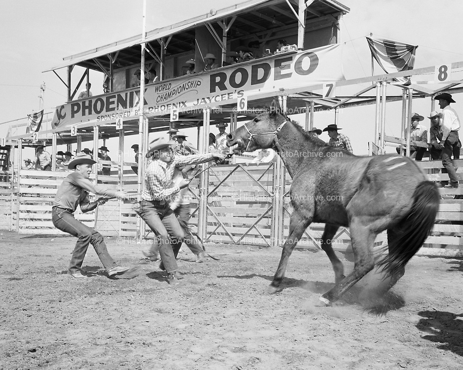0301-648A. Phoenix, Arizona, Phoenix JC's Rodeo, 1950s