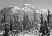 "Ackroyd 03999-12. ""Mt. Shasta, California. November 13-17, 1952"""