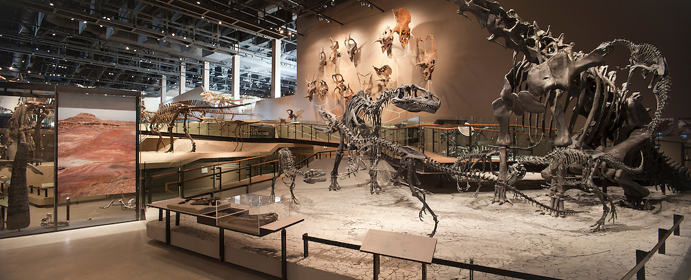 The Rio Tinto Center houses the Utah Museum of Natural History in Salt Lake City, Utah, USA. The Rio Tinto Center houses the Utah Museum of Natural History in Salt Lake City, Utah, USA.