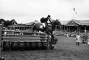 Show-jumper Eddie Macken takes a fence with at the RDS with his usual grace.<br />