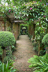The pergola with brick path and euphobia in urn as focal point. Design: Rani Lall