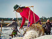 22 FEBRUARY 2017 - BAN LAEM, PETCHABURI, THAILAND: A worker unloads baskets of salt during the salt harvest in Petchaburi province of Thailand, about two hours south of Bangkok on the Gulf of Siam. Salt is collected in coastal flats that are flooded with sea water. The water evaporates and leaves the salt in large pans. Coastal provinces south of Bangkok used to be dotted with salt farms, but industrial development has pushed the salt farms down to remote parts of Petchaburi province. The harvest normally starts in early February and lasts until early May, but this year's harvest was delayed by a couple of weeks because of unseasonable rain in January that flooded many of the salt collection ponds.    PHOTO BY JACK KURTZ