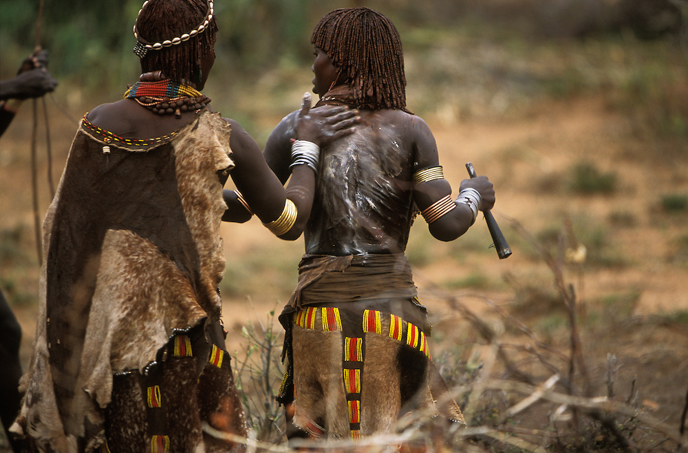 A Hamar woman participating in a bull jump, a ritual at which a man runs across the backs of a row of bullocks in order to become eligible for marriage, gets help from a female friend to soothe her scars with butter, in South Omo, Ethiopia. The woman, who is a close relative of the initiate, has been ritually whipped by maz, men who have performed the bull jump but have yet to marry. The Hamar view a scarified back as proof of a woman's love and devotion to her brothers. The 40,000-strong, cattle-herding Hamar are among the largest of the 20 or so ethnic groups which inhabit the culturally diverse Omo region in south-west Ethiopia.