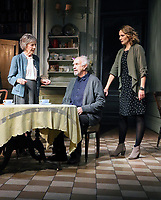 Dame Eileen Atkins, Jonathan Pryce, Anna Madeley, The Height of The Storm - Photocall, Wyndham's Theatre, London, UK, 04 October 2018, Photo by Richard Goldschmidt