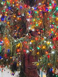 Detail of The Rockefeller Center Christmas Tree