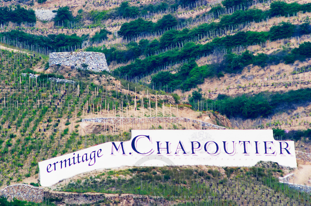 The Hermitage vineyards on the hill behind the city Tain-l'Hermitage, on the steep sloping hill, stone terraced. Sometimes spelled Ermitage. A sign in the vineyard with ermitage M Chapoutier.  Domaine M Chapoutier, Tain l'Hermitage, Drome Drôme, France Europe  Tain l'Hermitage, Drome, Drôme, France, Europe