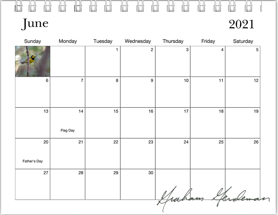 2021 Birds of Tennessee Calendar<br /> <br /> OUT OF STOCK / SOLD OUT! My calendars may still be available in local Nashville shops the Wood Thrush Shop, area Wild Birds Unlimited, and the Warner Park Nature Center. I am currently out of stock for web orders. Additional orders are possible - Email me through the contact form for information. <br /> <br /> _____<br /> <br /> <br /> Featuring 12 months of birds of the great state of Tennessee. All of the profits of this annual calendar will go to the B.I.R.D. Research program at Warner Park Nature Center in Nashville, funded through Friends of Warner Parks, a 501(c)(3) nonprofit organization (warnerparks.org).