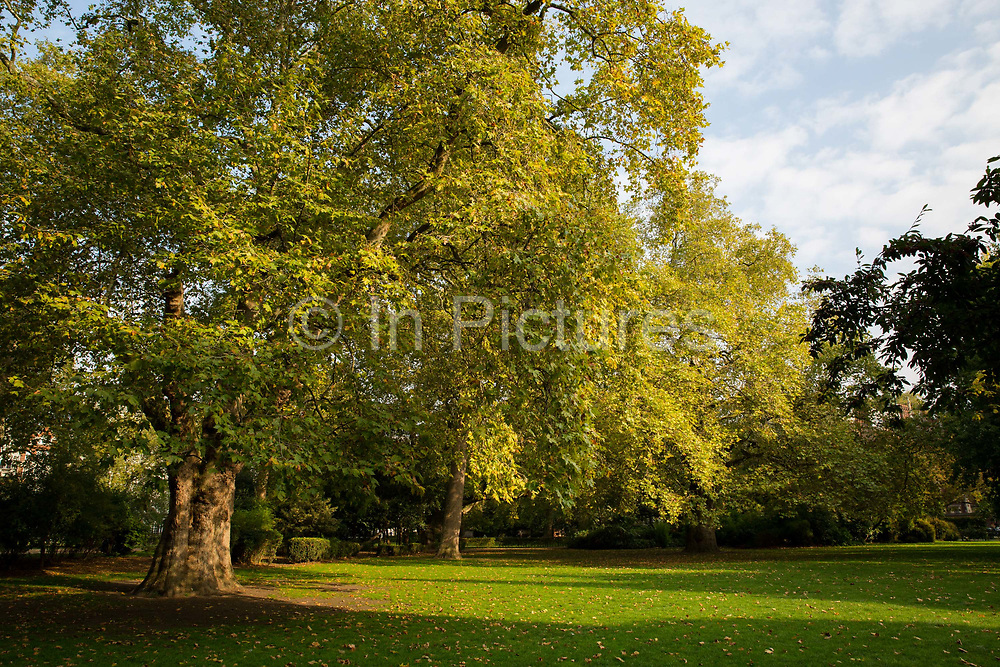 Lincoln's Inn Fields on 13th October 2015 in London, United Kingdom. Lincolns Inn Fields is the largest public square in London.