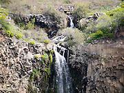 Israel, Golan Heights, Gamla waterfall  Nature reserve.