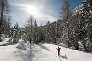 Winter hiking with snowshoes, above Passo Monte Croce. Dolomiti di Sesto (Sexten Dolomites), Südtirol (South Tyrol), Italy © Rudolf Abraham