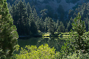 Lane Lake, Hoover Wilderness, Humbolt-Toiyabe National Forest, California