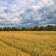 """Heartland Storm"" <br />
