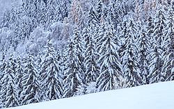 THEMENBILD - schnee behangene Bäume, aufgenommen am 12. November 2016, Krimml, Österreich // Snow covered trees, Krimml, Austria on 2016/11/12. EXPA Pictures © 2016, PhotoCredit: EXPA/ JFK