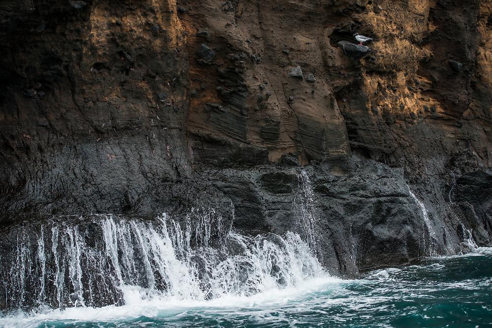 Buccaneer Cove, Santiago Island<br /> Galapagos Islands<br /> Ecuador<br /> South America