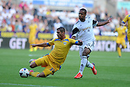 Swansea city's  Wayne Routledge tackles Sebastian Achim of Petrolul. UEFA Europa league, play off round, 1st leg match, Swansea city v FC Petrolul Ploiesti at the Liberty stadium in Swansea on Thursday 22nd August 2013. pic by Andrew Orchard , Andrew Orchard sports photography,