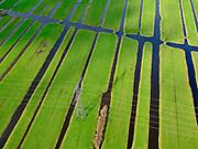 Nederland, Zuid-Holland, Stolwijk, 25-02-2020; Krimpenerwaard, omgeving buurtschap het Beijersche. Veenweidegebied met strokenverkaveling. Hoogspanningsmast, onderdeel van het Landelijk Koppelnet (hoogspanningsnet), 380 kV.<br /> Polder Krimpenerwaard. Peat meadow area with parcellation. High-voltage pylon, part of the National Interconnection Network (high-voltage network), 380 kV.<br /> <br /> luchtfoto (toeslag op standard tarieven);<br /> aerial photo (additional fee required)<br /> copyright © 2020 foto/photo Siebe Swart