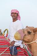 Man with camel in the desert near Dubai, United Arab Emirates