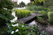 Zantedeschia (Calla Lilies) next to a metal loveseat on a deck overlooking the moat and tudor manor house, Hindringham Hall, Hindringham, Norfolk