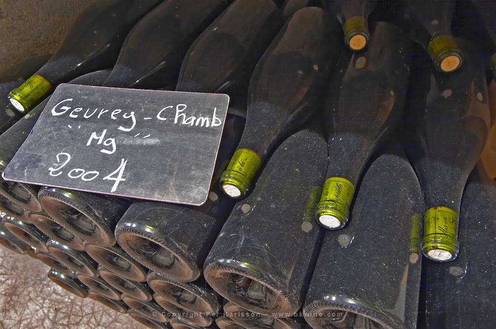 Bottles aging in the cellar. Gevrey magnum 2004. Domaine Philippe Livera, Gevrey Chambertin, Cote de Nuits, d'Or, Burgundy, France