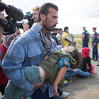Illegal migrant carries his unconscious son because of fatigue and heat stroke near Roszke (about 174 km South of capital city Budapest), Hungary on September 07, 2015. ATTILA VOLGYI