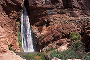 Deer Creek Falls, Grand Canyon National Park, Arizona..Subject photograph(s) are copyright Edward McCain. All rights are reserved except those specifically granted by Edward McCain in writing prior to publication...McCain Photography.211 S 4th Avenue.Tucson, AZ 85701-2103.(520) 623-1998.mobile: (520) 990-0999.fax: (520) 623-1190.http://www.mccainphoto.com.edward@mccainphoto.com.
