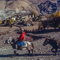 A horseman gallops past a village near Muktinath, Nepal.