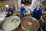 Vendors sell fish at market in Tho Quang village, outside Hanoi, Vietnam.