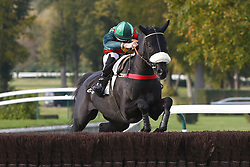 October 28, 2017 - Compiegne, France, France - Course 6 - Daring Rose - S Cossart (Credit Image: © Panoramic via ZUMA Press)