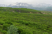 Dempster Highway in the Tombstone Range (Ogilvie Mountains)<br />
