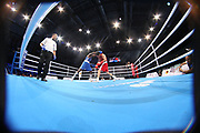 Boxen: AIBA Box-WM, Day 5, Hamburg, 29.08.2017<br /> 69 Kg: Tuvshinbat Byamba (MGL, red) -  Abass Barou (GER, blue)<br /> © Torsten Helmke
