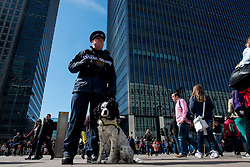 © Licensed to London News Pictures. 21/04/2013. London, UK. Canary Wharf Security guard with his search dog at Canary Wharf during the Virgin London Marathon 2013 on April 21, 2013 in London, England. Photo credit : Peter Kollanyi/LNP