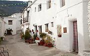 Houses in the village of Capileira, High Alpujarras, Sierra Nevada, Granada province, Spain