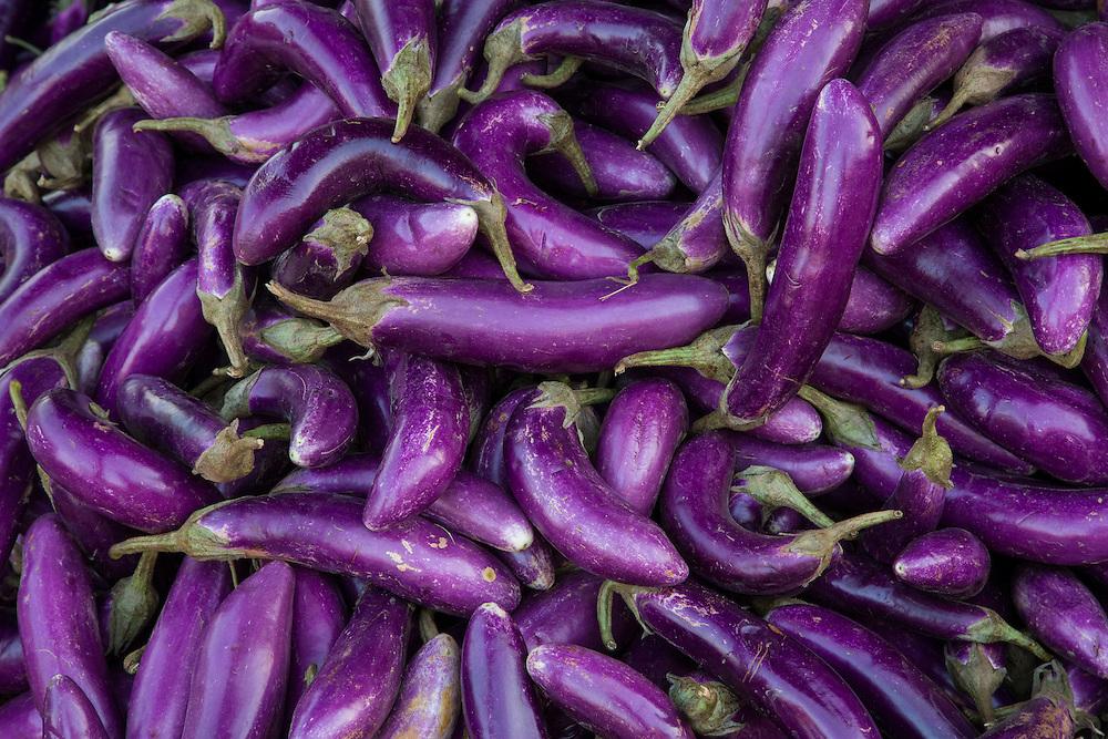 Asia, Myanmar, Yangon, pile of purple Japanese eggplants