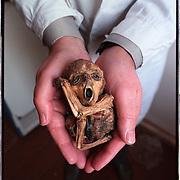 05-03-1996-Oekraine, Tsjernobyl. Foetus uit de mutanten verzameling van Dr. Konowalov die de gevolgen van de ramp op deze wijze pobeert te illustreren.<br />Foto: Sake Elzinga/Hollandse Hoogte
