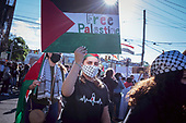 """NY: """"Palestine Solidarity Action,"""" protest"""