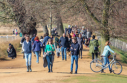 """© Licensed to London News Pictures. 27/02/2021. London, UK. Walkers enjoy the sunshine in Richmond Park, South West London this afternoon as weather forecasters predict a mild and sunny weekend. This week, Prime Minister Boris Jonson announced his """"Roadmap Map' out of Lockdown with a gradual unlocking of Covid-19 restrictions over the next few months. Photo credit: Alex Lentati/LNP"""