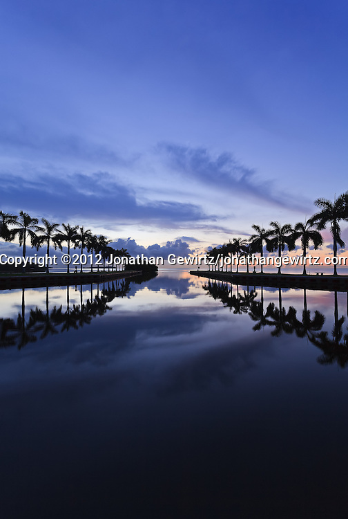 Looking out over Biscayne Bay a few minutes before sunrise. Charles Deering Estate at Cutler, Miami, Florida. WATERMARKS WILL NOT APPEAR ON PRINTS OR LICENSED IMAGES.
