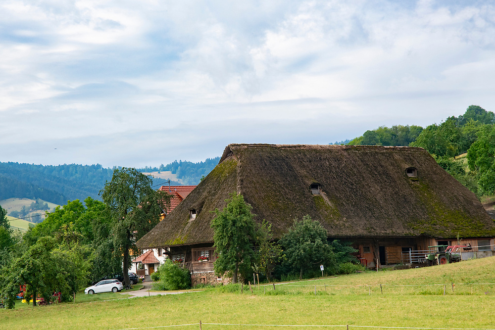 Thatch house on hillside in Breisach Germany