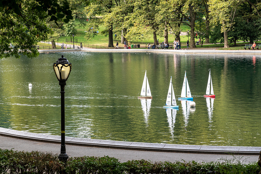 A miniature regatta in progress on the Sailboat Pond in Central Park.