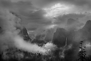 Morning Mist, Yosemite Valley, Yosemite National Park, California 2013