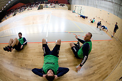 David Spiler, Bostjan Kavas and Ales Pajovic at Open training session for the public of Slovenian handball National Men team before European Championships Austria 2010, on December 27, 2009, in Terme Olimia, Podcetrtek, Slovenia.  (Photo by Vid Ponikvar / Sportida)