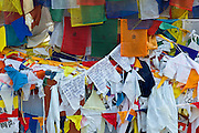 Buddhist prayer flags at Mulagandhakuti Vihara Temple at Sarnath near Varanasi, Benares, Northern India