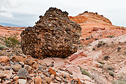 Conglomerate rock erodes in the White Domes area of Valley of Fire State Park. Dedicated in 1935, it is the oldest state park in Nevada. Starting more than 150 million years ago, great shifting sand dunes during the age of dinosaurs were compressed, uplifting, faulted, and eroded to form the park's fiery red sandstone formations. The park adjoins Lake Mead National Recreation Area at the Virgin River confluence, at an elevation of 2000 to 2600 feet (610-790 m), 50 miles (80 km) northeast of Las Vegas, USA. Park entry from Interstate 15 passes through the Moapa Indian Reservation.